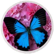 Pink Camilla And Blue Butterfly Round Beach Towel