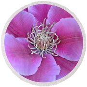 Pink Clematis Beauty Round Beach Towel