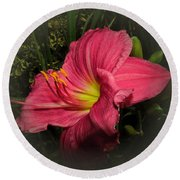 Pink Day Lily Round Beach Towel