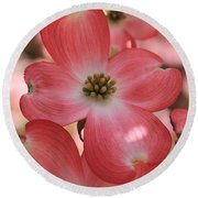 Pink Dogwood At Easter 2 Round Beach Towel