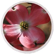 Pink Dogwood At Easter 4 Round Beach Towel