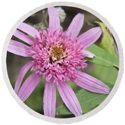 Pink Double Delight Echinacea Round Beach Towel