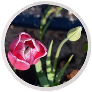 Pink Flower And Bud Round Beach Towel