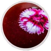 Pink Flower In Red Wine Cocktail Round Beach Towel