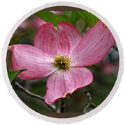 Pink Flowering Dogwood Round Beach Towel