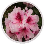Pink Flowers In Spring Round Beach Towel