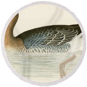 Pink Footed Goose Round Beach Towel