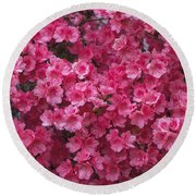 Pink Full Frame Azalea Blossoms Round Beach Towel