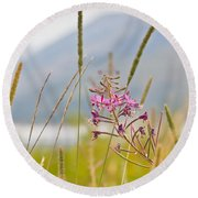 Pink Gem - Fire Weed Wildflower In Grand Teton National Park - Wyoming Round Beach Towel