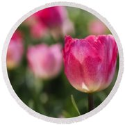 Pink Glowing Tulip Round Beach Towel