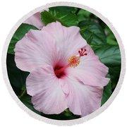 Pink Hibiscus #3 Round Beach Towel