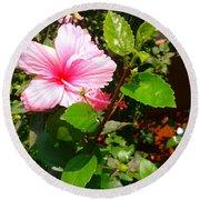 Pink Java Flower  Round Beach Towel