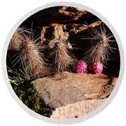 Pink Lady Cactus Round Beach Towel