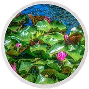 Pink Lilly Flowers And Pads Round Beach Towel