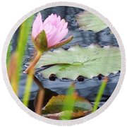 Pink Lily And Pads Round Beach Towel