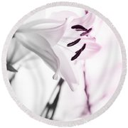 Pink Lily Feature Round Beach Towel