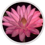 Pink Lily Flower Round Beach Towel