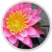 Pink Lotus Flower - Zen Art By Sharon Cummings Round Beach Towel