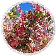 Pink Magnolia Round Beach Towel by Joann Vitali