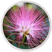 Pink Mimosa Flower Round Beach Towel