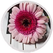 Pink Mum On Piano Keys Round Beach Towel