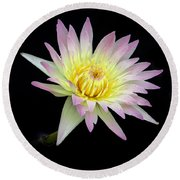 Pink N Yellow Water Lily Too Round Beach Towel