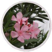Pink Oleander 4 Round Beach Towel