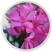 Pink Oleander Bunch Round Beach Towel