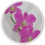 Pink Orchids 1 Round Beach Towel