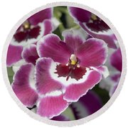 Pink Pansy Orchid Round Beach Towel