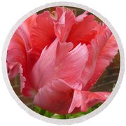 Pink Parrot Tulip Round Beach Towel