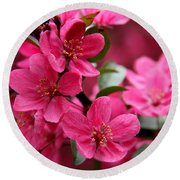 Pink Plum Blossoms Round Beach Towel