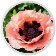 Pink Poppy Bloom Round Beach Towel
