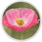 Pink Poppy Flower Round Beach Towel