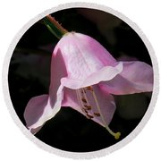 Pink Rhododendron Blossom Round Beach Towel