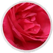 Pink Rose 03 Round Beach Towel