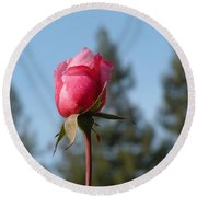 Pink Rose And Trees Round Beach Towel