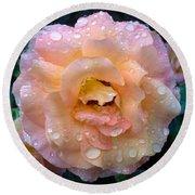 Pink Rose Bathed In Rain Round Beach Towel