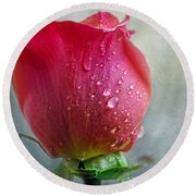 Pink Rose Bud With Drops Round Beach Towel