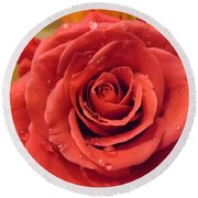 Pink Rose Drops Round Beach Towel