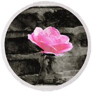 Pink Rose In Black And White Round Beach Towel