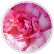 Rose With Touch Of Pink Round Beach Towel