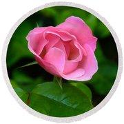 Pink Rose Volunteer Round Beach Towel