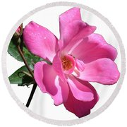Pink Rose With Bud Round Beach Towel