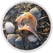 Pink Shell Bowl Round Beach Towel