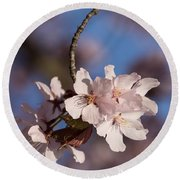 Pink Spring - Sunlit Blossoms And Blue Sky - Vertical Round Beach Towel