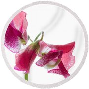 Pink Sweet Pea 2 Round Beach Towel