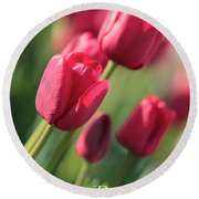 Pink Tulip Dream Birthday Card Round Beach Towel