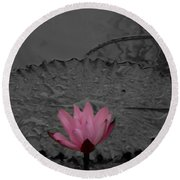 Pink Water Lilly Round Beach Towel