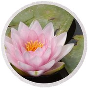 Pink Water Lily And Leaves Round Beach Towel
